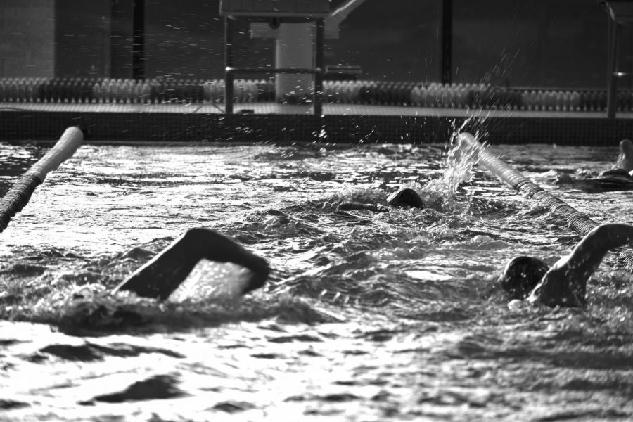 Swimmers do laps during practice. The girls swimming team is ready to train hard this year, with both returning members and new members.